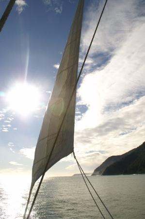 Fiordland National Park, นิวซีแลนด์: Sail away Milford Sound