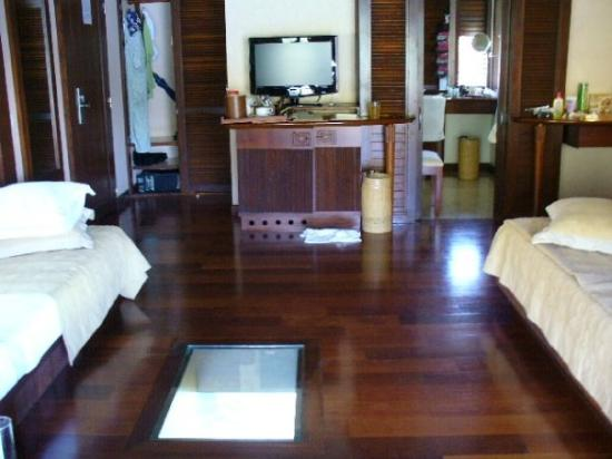 Moorea French Polynesia Our Hut With Glass Floor You Can See The Fish