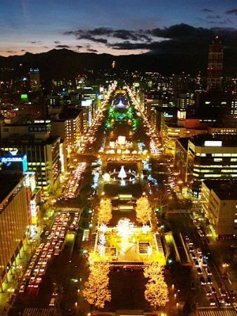 Sapporo TV Tower: Christmas in Odori park.