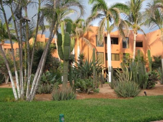 San Jose del Cabo, Mexico: El Presidente Hotel, Los Cabo