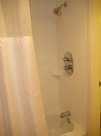 curved shower curtain, large shower head, great water pressure and ...