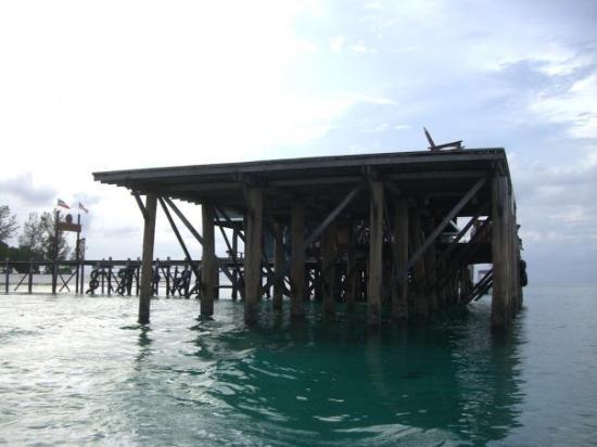 Sandakan, Malaysia: Diving Lankayan 321.jpg