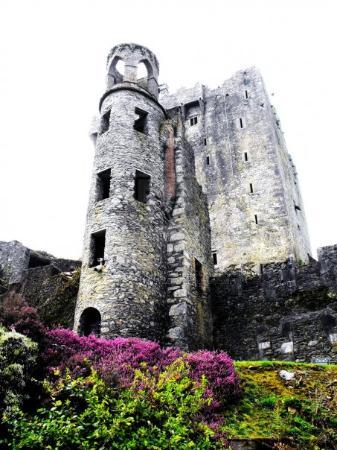 บลาร์นีย์, ไอร์แลนด์: Blarney Castle.