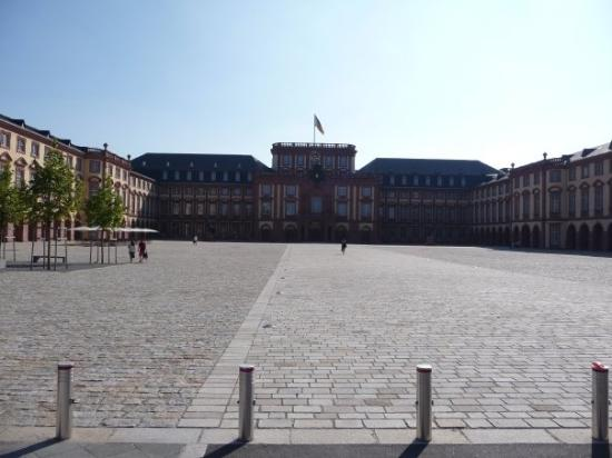 The University of Mannheim, also the second largest castle in Europe behind Versailles.