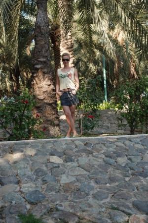 สวนและหาดจูเมร่า ภาพถ่าย