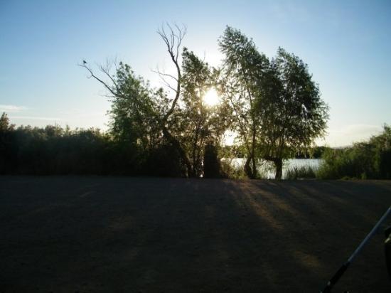 Palo Verde, CA: Sunrise at the dock