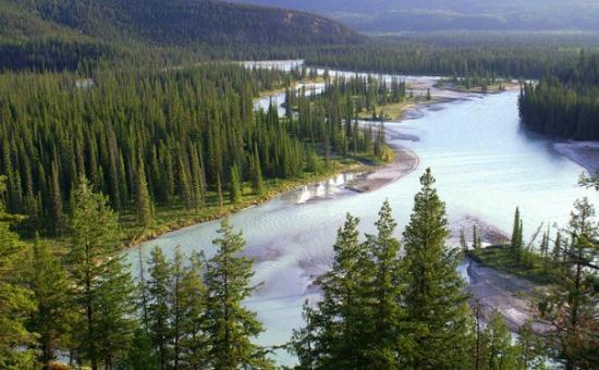 Jasper National Park, แคนาดา: Athabasca River