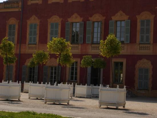 Musée Matisse : Nice - Musee de Matisse