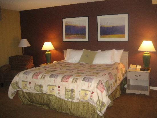 Saint Charles, IL: Courtyard room with king size bed