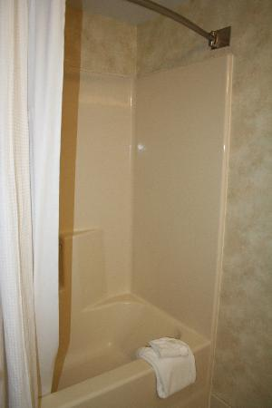 Holiday Inn Express Bethany Beach: shower