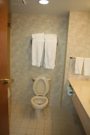 Bethany Beach, DE: clean bathroom