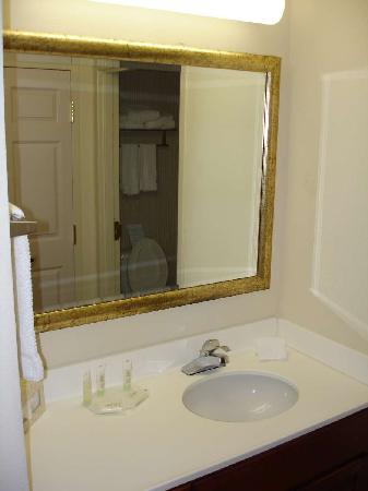 Staybridge Suites Raleigh-Durham Apt-Morrisville : Aug 2009 - Sink