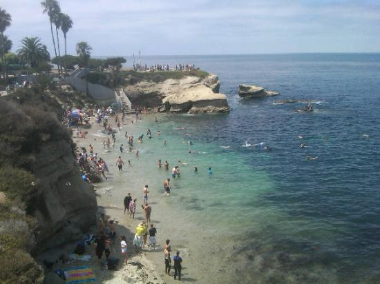 La Jolla Cove Photo