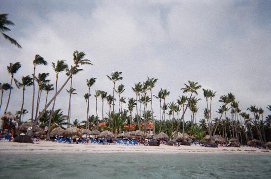 Dreams Palm Beach Punta Cana: basking on the beautful beach