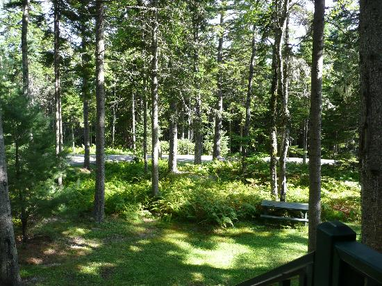 Point Lookout Resort: View from cabin front porch