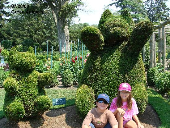 Green Animals Topiary Gardens (Portsmouth)   All You Need To Know Before  You Go (with Photos)   TripAdvisor