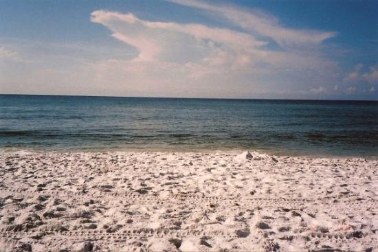 หาดออเรนจ์, อลาบาม่า: Orange Beach, AL, the best beach!!
