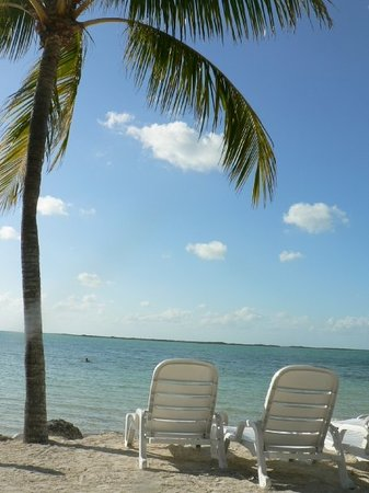 Ки Ларго, Флорида: Hilton Key Largo Beach Resort