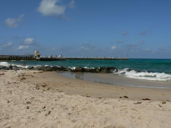 บอยน์ตันบีช, ฟลอริด้า: Boynton Beach, FL