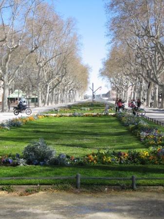 Montpellier esplanade charles de gaulle fotograf a de montpellier herault tripadvisor - Esplanade charles de gaulle ...