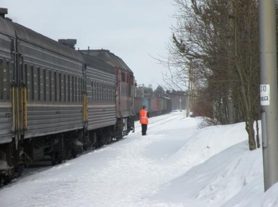 """มูร์มันสค์, รัสเซีย: Otro tren Kastomuksha to St. Petersburg, otra de las lineas """"Artica"""". Este sera mi mas largo via"""