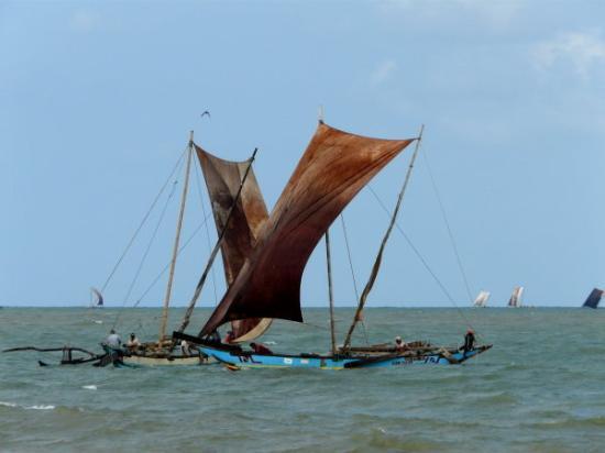 เนกอมโบ, ศรีลังกา: Out-rigger fishing boats in Negombo