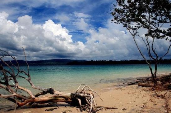 เกาะแฮฟล็อค, อินเดีย: Jolly Buoy Island bei Havelock (Andamanen/Indien)