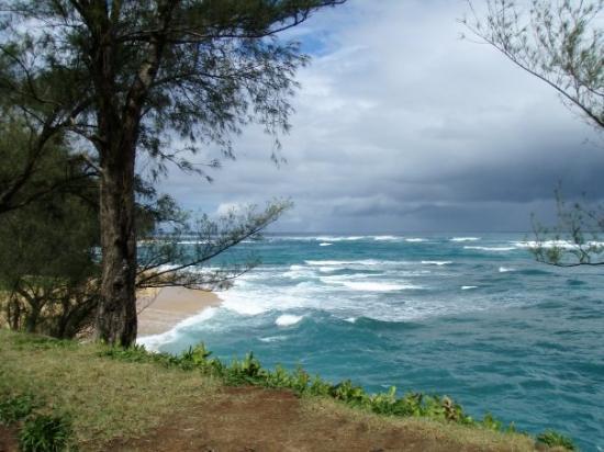 Kilauea, HI: PARADISE!