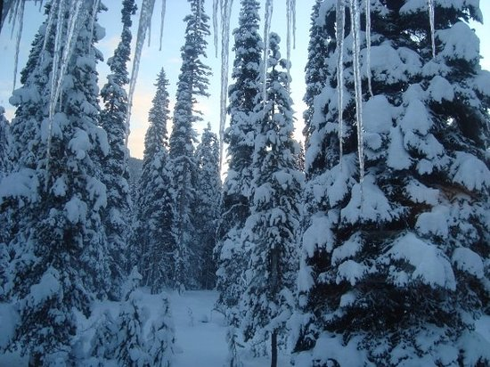Hope, Canada: Manning Park, Canada