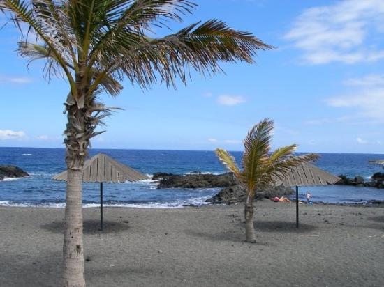 Hotel Playa De Palma