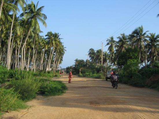 Auf dem Weg zur Sklavenküste in Cotonou...