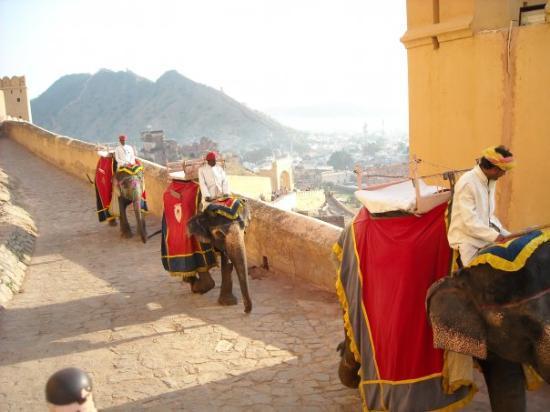 พระราชวังแอมเบอร์: Promenade à dos d'éléphant pour monter au fort Amber