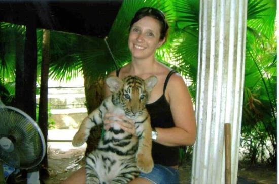 Rawai, Thailand: 1 month cub