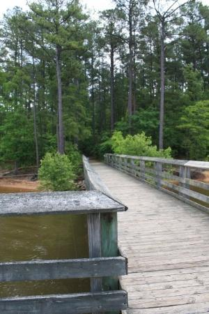 Durham, NC: Fishing Pier at Falls Lake, NC.  Rollingview Campground State Park.