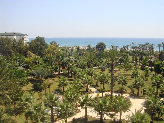 Saphir Hotel: garden