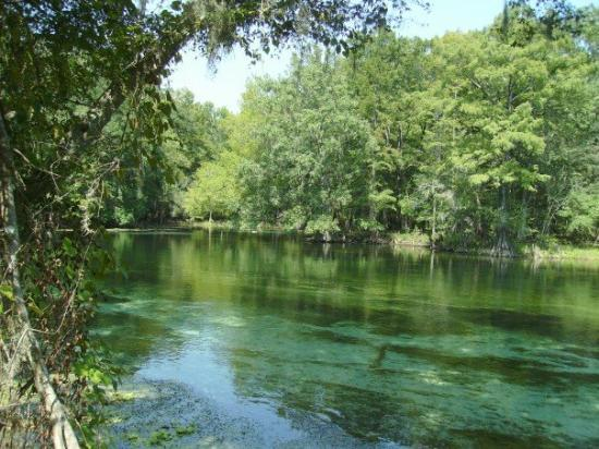 Chiefland, Floride : Ginnie Springs FL