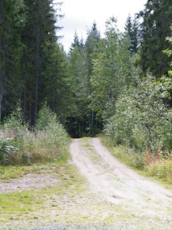 "Kuru, Finland: ""street"""