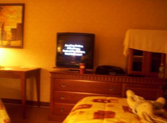 Foto de Quality Inn & Suites Bay Front
