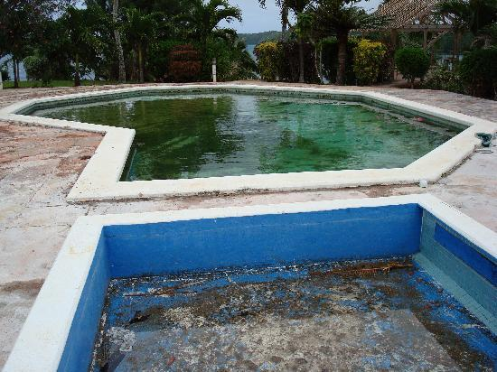 The Paradise International Hotel : Paradise Hotel swimming pool (filthy).