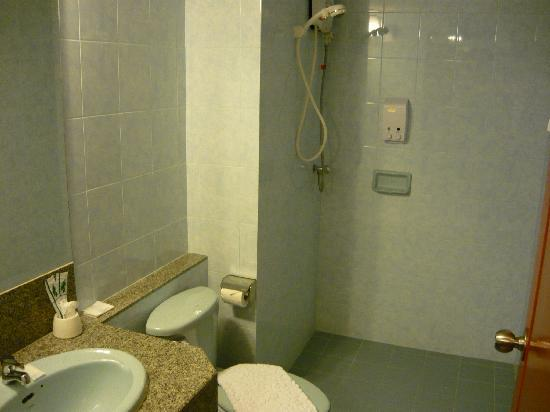 Centric Place Hotel: 電気式ヒーターによるシャワー