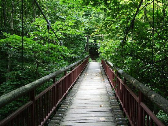 北海道開拓の村, なんとつり橋もある。