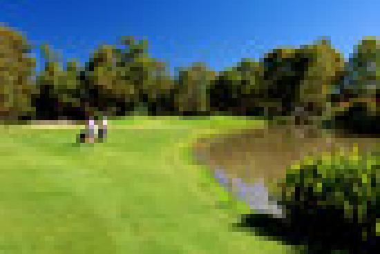 Penina Hotel & Golf Resort: golf