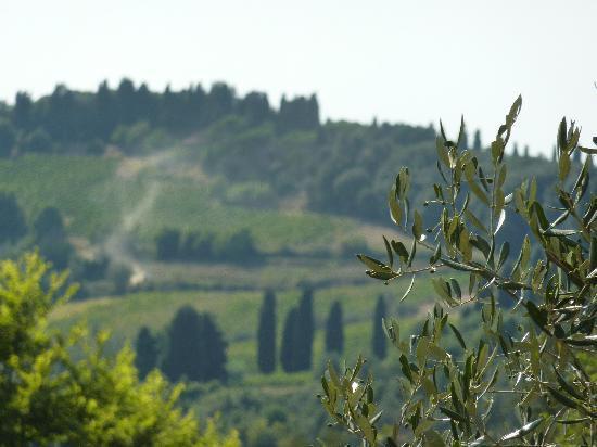 Photo of Villa Borbone Lucca