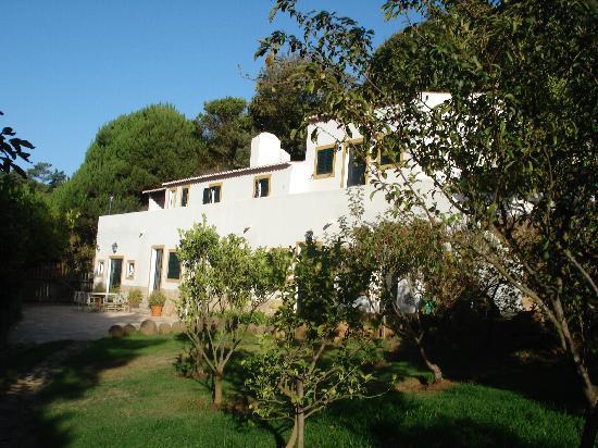 Quinta do Rio Touro: looking at the house