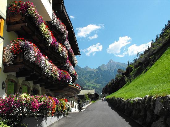 Alpendomizil Neuhaus: Local Scenery