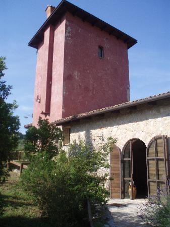 Sperlonga, Ιταλία: La torre