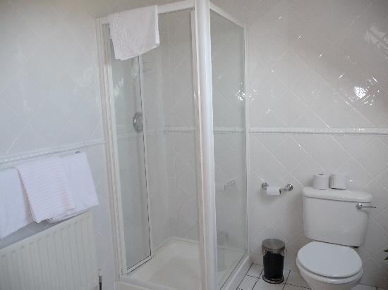 Dungarvan, Irlanda: toilet