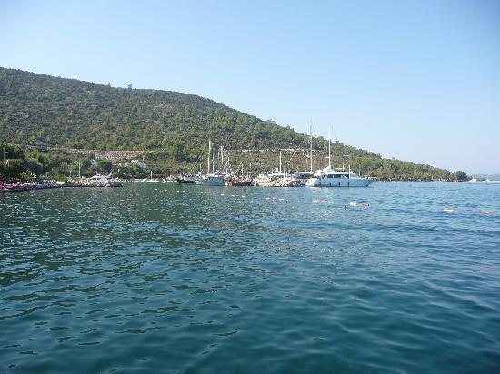 Hotel Torbahan: Torba's small port