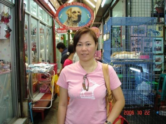 Chatuchak Weekend Market: Pet Shop