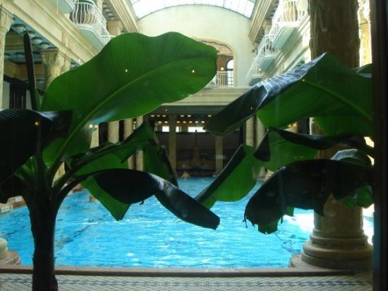 Gellert Spa: Termas em Budapeste